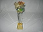 2007_07_GLOBAL_TiC_The_Best_Social_Entrepreneurship_Award